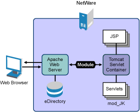 Novell Doc: NW 6 5 SP8: Tomcat Administration Guide - Deploying